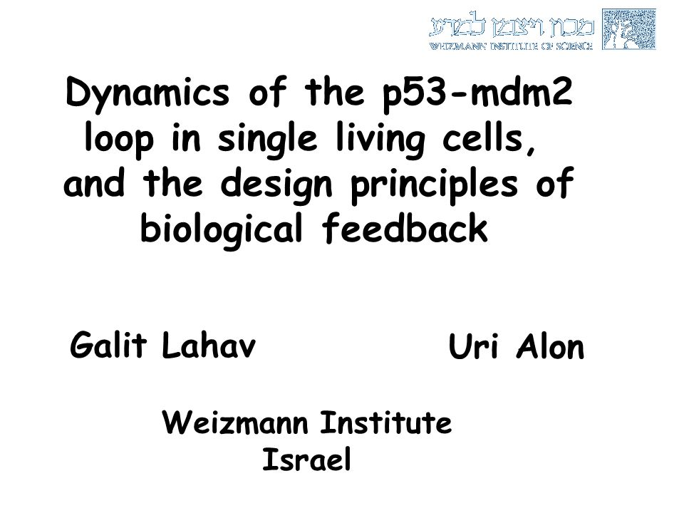 An Introduction To Systems Biology Pdf Uri Alon Weizmann
