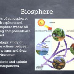Hydrosphere Lithosphere Atmosphere Diagram 2006 Chevrolet Cobalt Wiring Ecosystems And Their Components Ppt Video Online Download