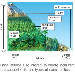Deciduous Forest Diagram Wiring For A 3 Way Toggle Switch Climate And Ecosystems Ppt Video Online Download