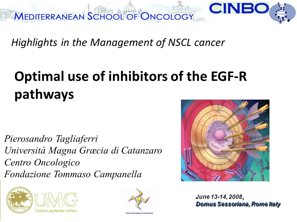 Optimal Use Of Inhibitors Of The Egfr Pathways Ppt