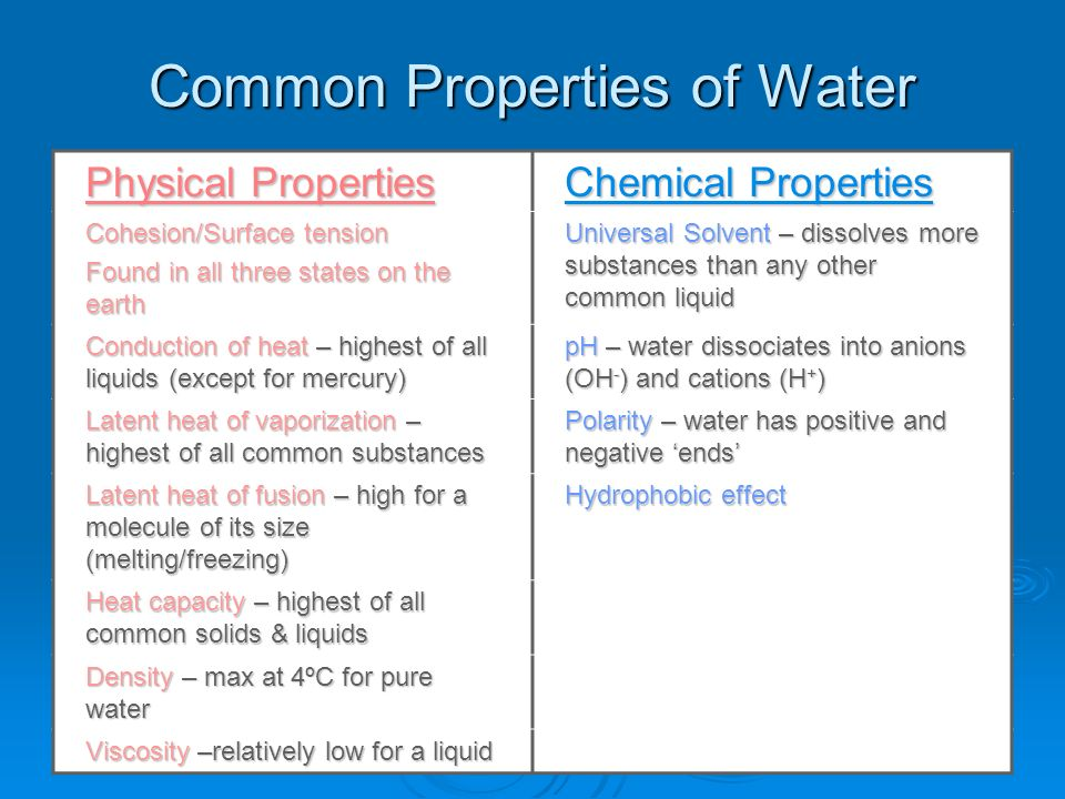 Chemical And Physical Features Of Seawater And The World Ocean  Ppt Video Online Download