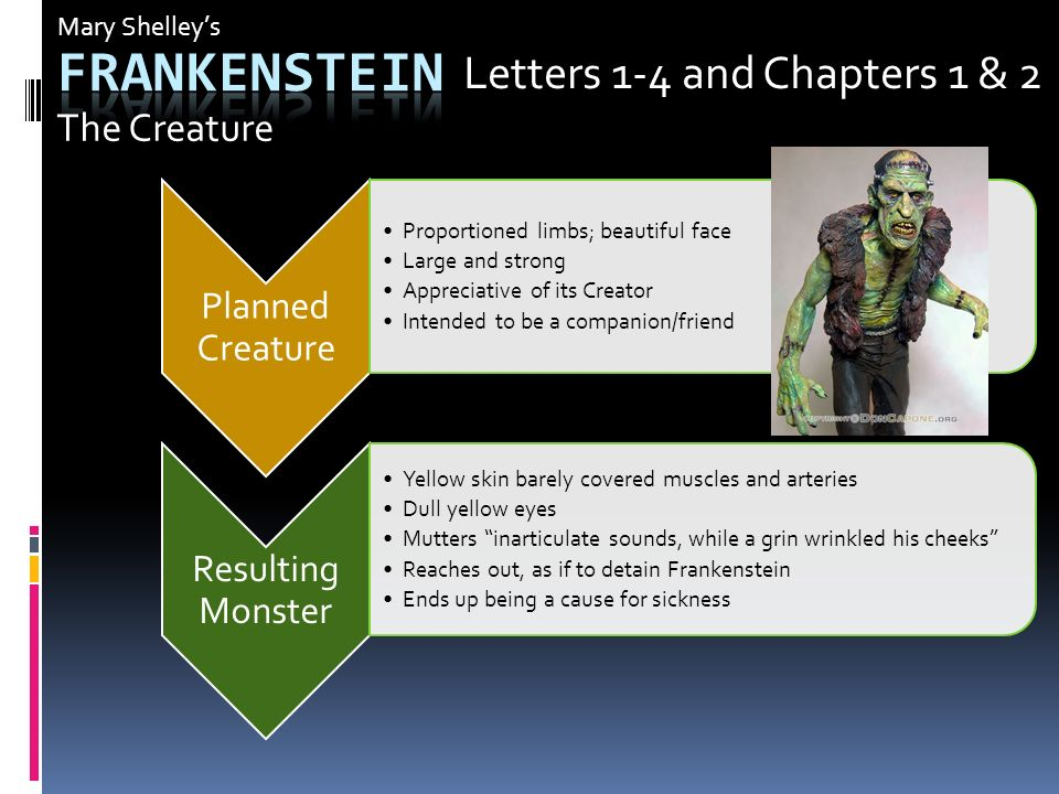 Beautiful Frankenstein Letter 4 Summary  How to Format a