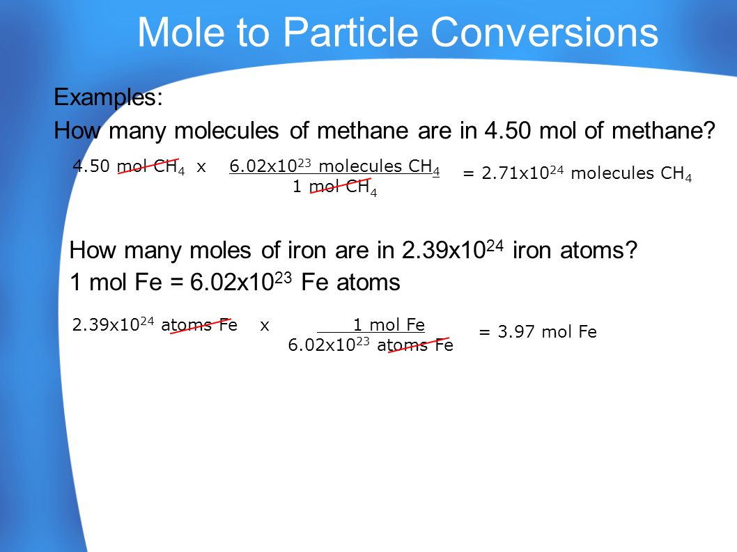 Worksheet Moles Molecules And Grams Worksheet Worksheet