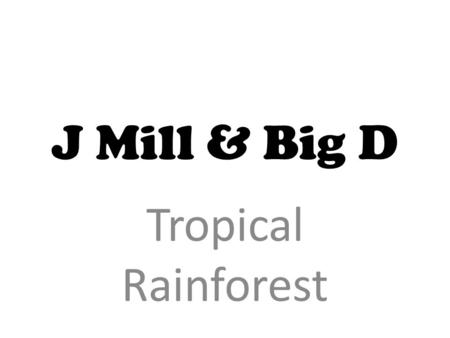 Why is it tropical? ☼The rain forest contains more species