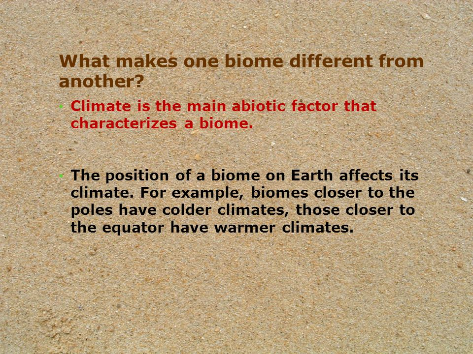 The Earth's Biomes Ppt Video Online Download