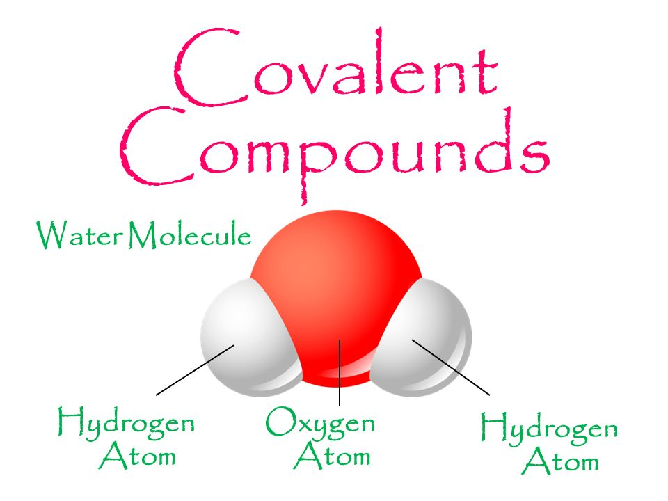 venn diagram of ionic and covalent bonds 98 ford windstar fuse compounds related keywords & suggestions - long tail