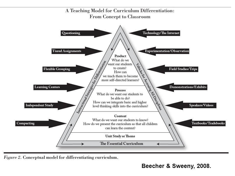 Universal Design for Learning Connections for