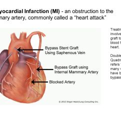 Diagram Of A Heart Bypass Graft Ba Xr6 Icc Wiring Actions Cardiac Cycle One Complete Heartbeat The