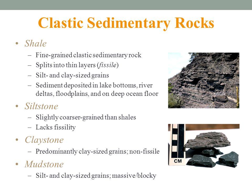 Medium Sized River Rock