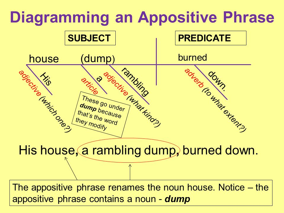 diagram appositive phrases 2009 audi a4 engine predicate adjective sentence appositives and ppt download