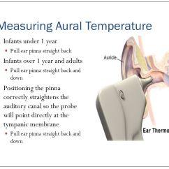 Ear Tympanic Membrane Diagram 2011 Honda Pilot Fuse Vital Signs-temperature - Ppt Video Online Download