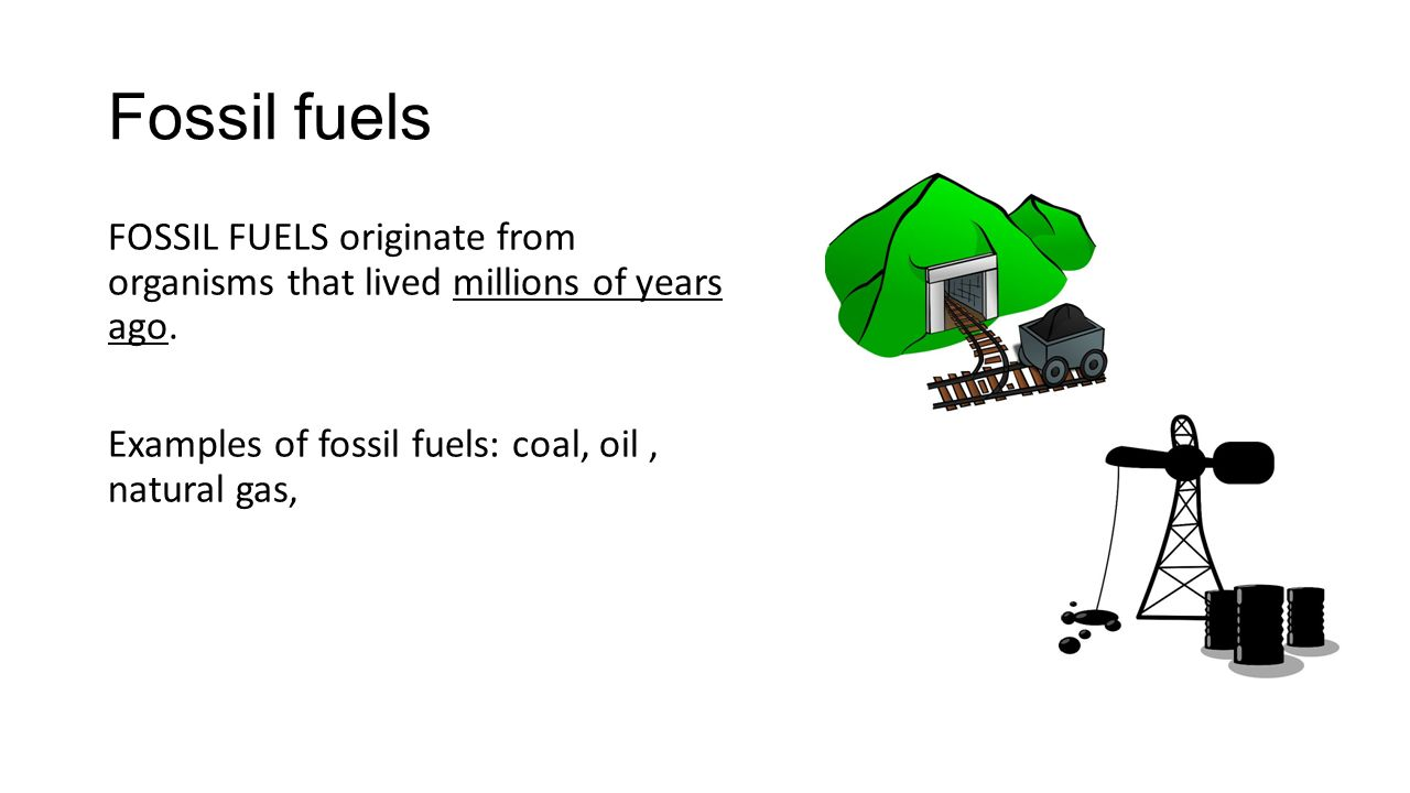 Biofuel Examples Energy