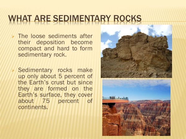 UNIT 5 Sedimentary Rocks ppt video online download