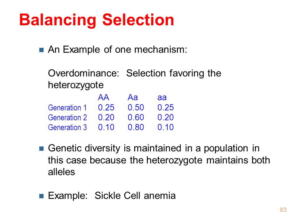 4262017 Natural Selection  ppt download