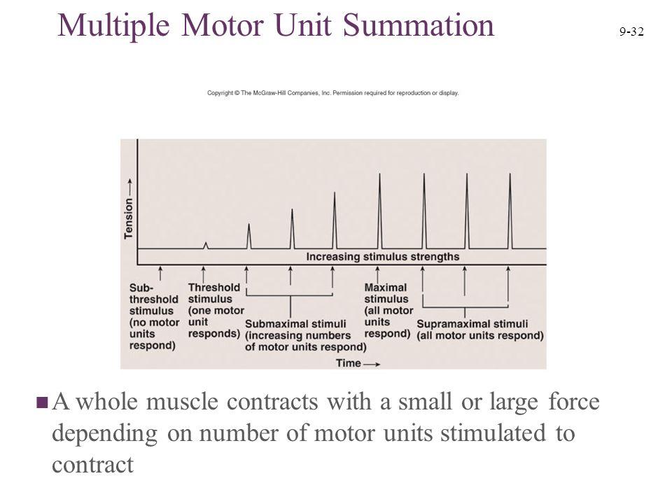 Multiple Motor Unit Summation Quizlet Automotivegarage