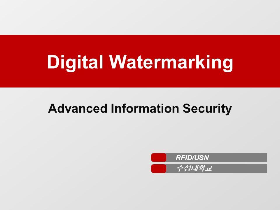 Digital Information Security