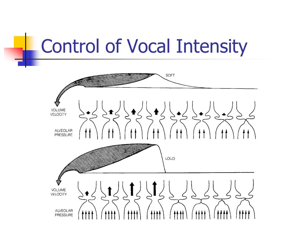 Voice Breathy Strained Rough Glottal Fry Example