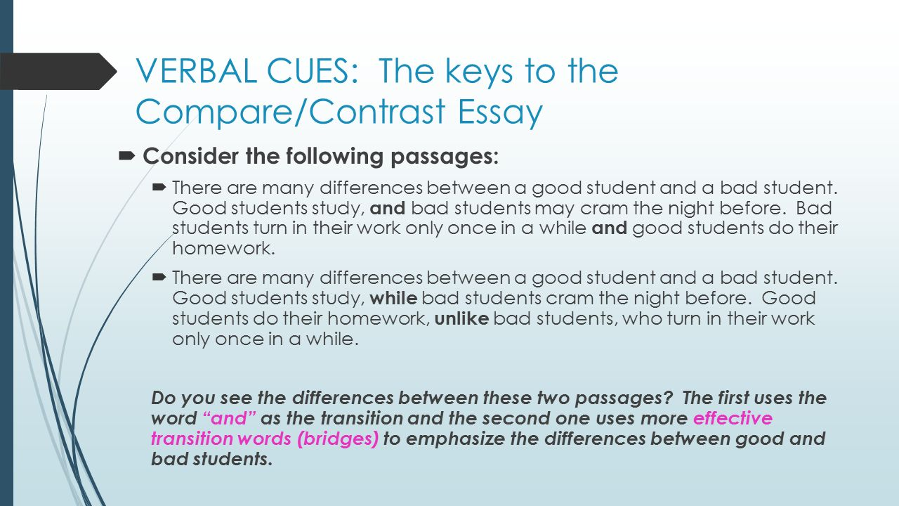 Compare And Contrast Essay Example For College Verbal Essay Custom Paper Example Ijtermpaperdhtm Butylk Us