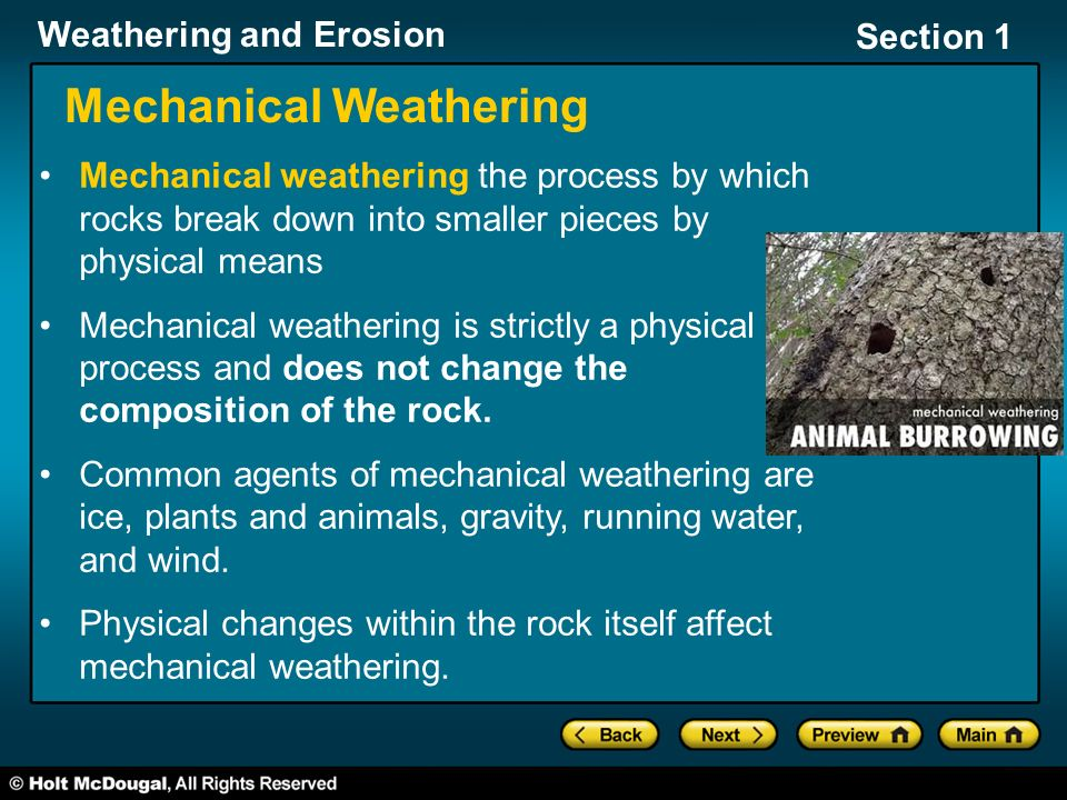 Section 1: Weathering Processes