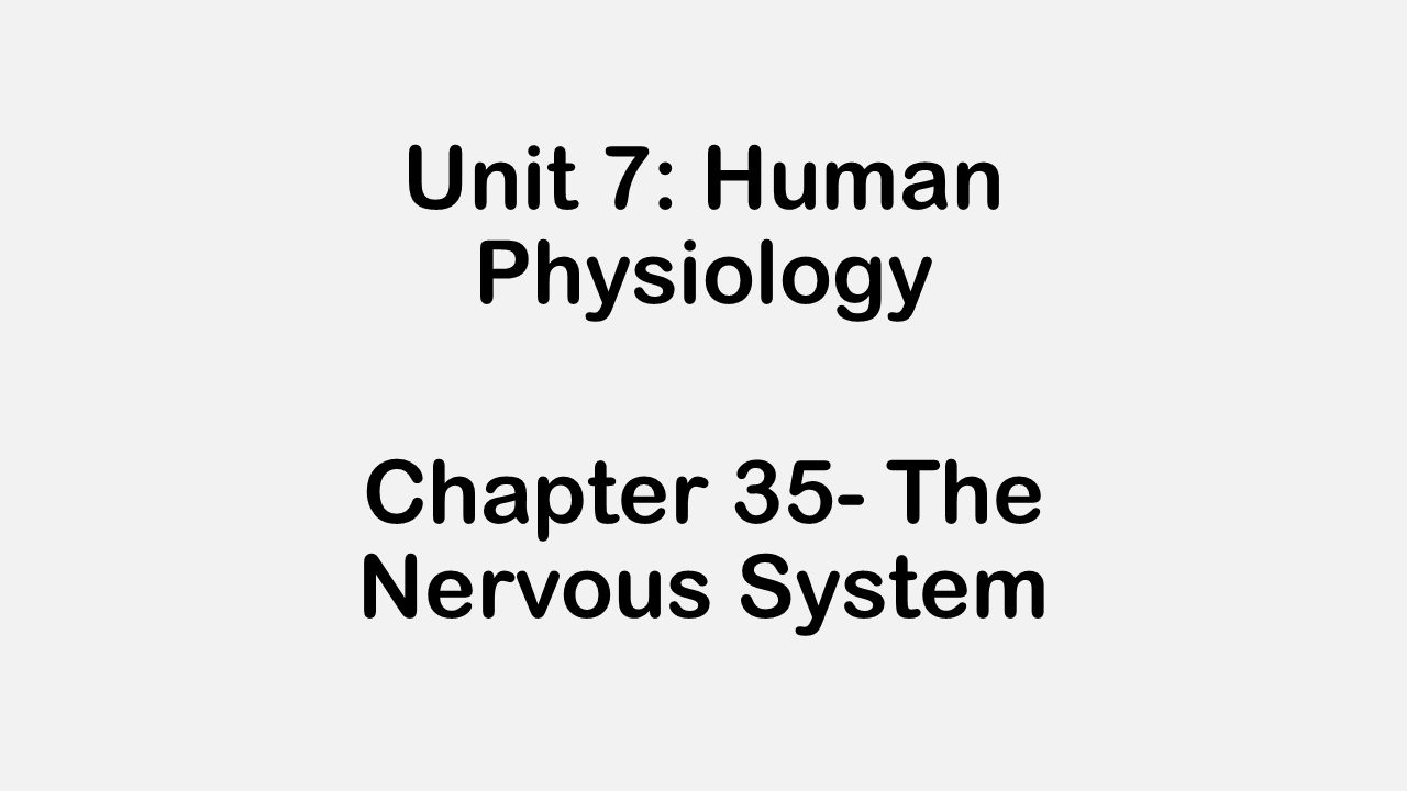 Unit 7: Human Physiology Chapter 35- The Nervous System