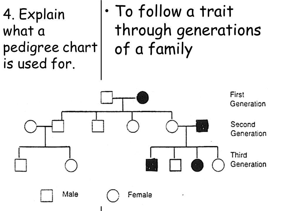 Topic: Genetics Aim: How do we use pedigree charts to