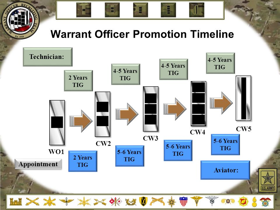 Warrant Officer Resume Examples