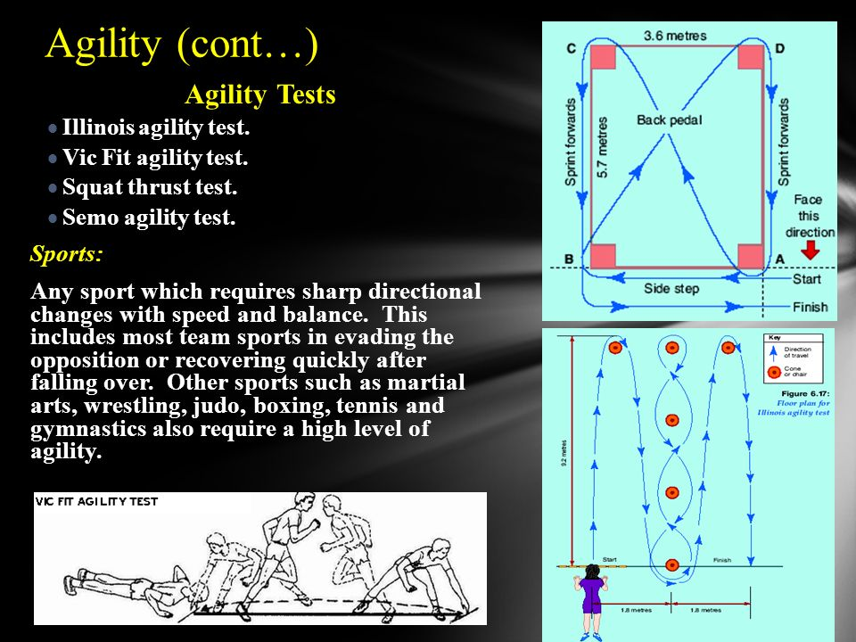 martial arts diagram dodge dart wiring 2016 fitness components & testing - ppt download
