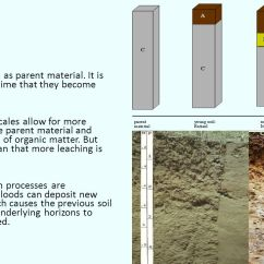 Horizon Diagram Soil Formation Sr20det Wiring What Is A Combination Of Four Main Components Ppt Time All Soils Begin As Parent Material It Only Though That They Become