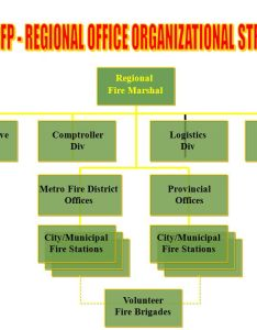 District volunteer fire brigades bfp regional office organizational structure also bureau of protection ppt video online download rh slideplayer