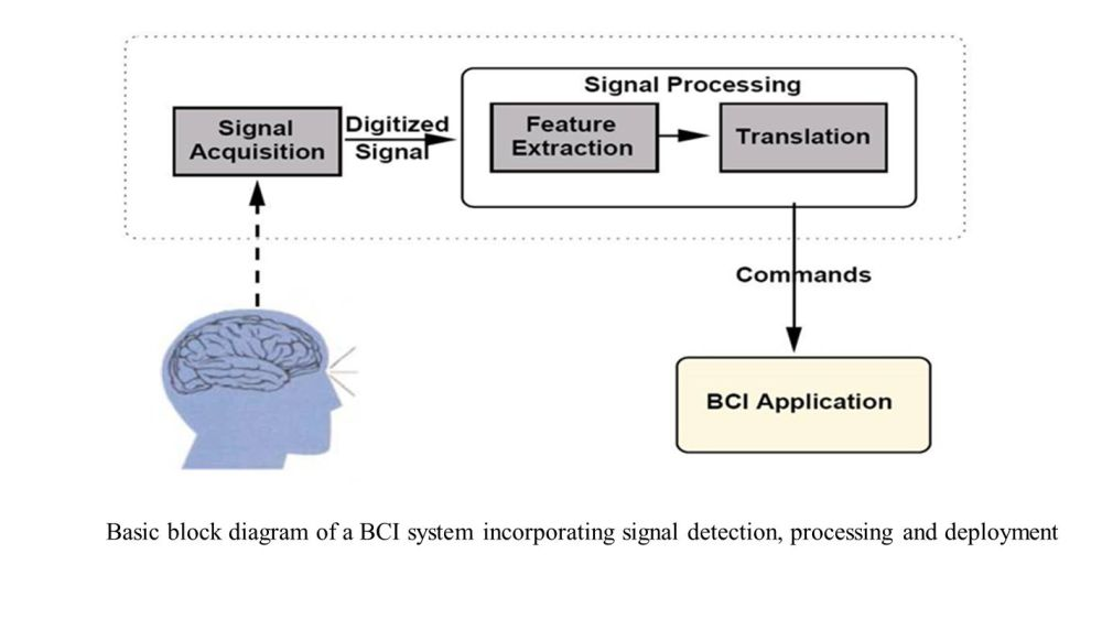 medium resolution of 3 basic block diagram of a bci system incorporating signal detection processing and deployment
