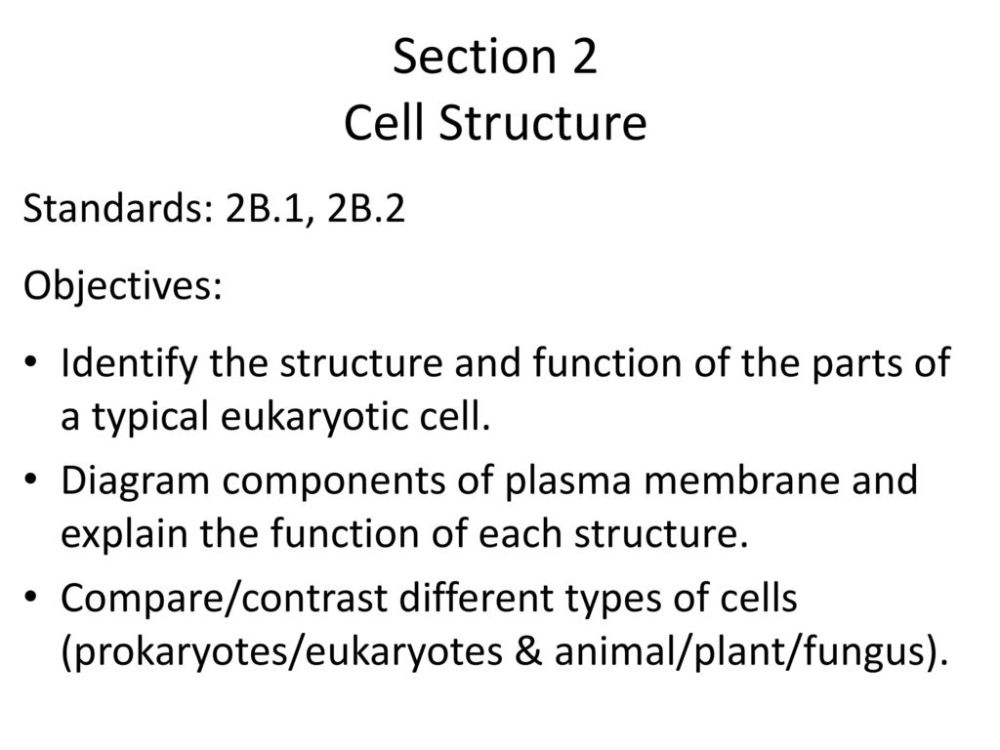 medium resolution of section 2 cell structure
