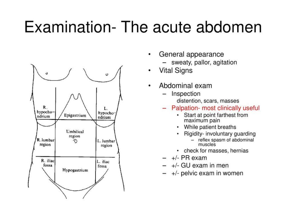 medium resolution of 14 examination