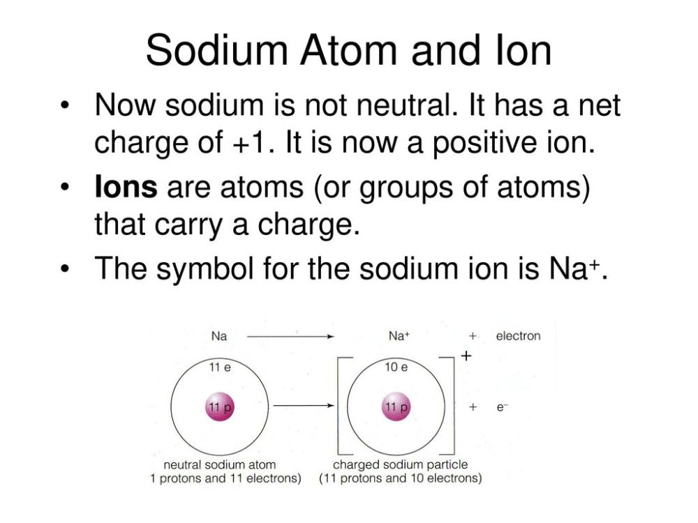 medium resolution of 5 sodium