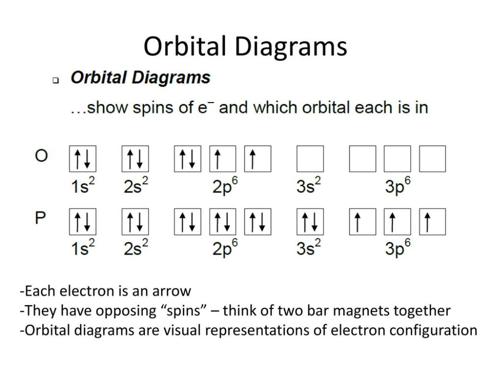 medium resolution of 28 orbital diagrams