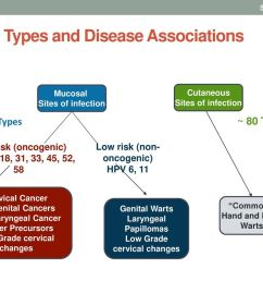 hpv types and disease associations [ 1024 x 768 Pixel ]
