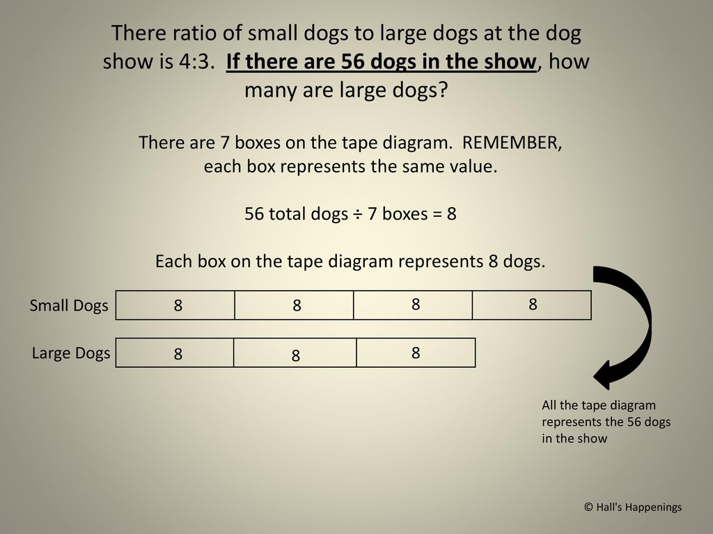 hight resolution of each box on the tape diagram represents 8 dogs