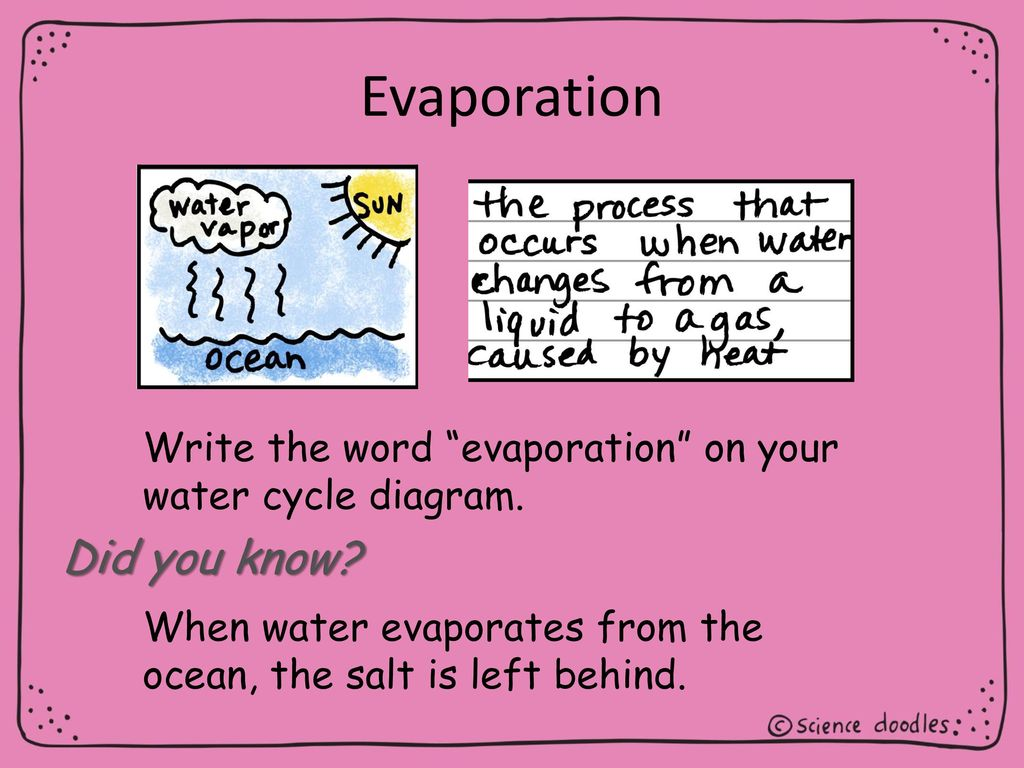hight resolution of 5 evaporation did you know write the word evaporation on your water cycle diagram