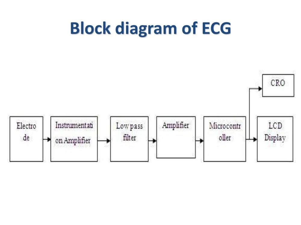 medium resolution of physiologic signals lecture 2 ppt download 3 block diagram of ecg