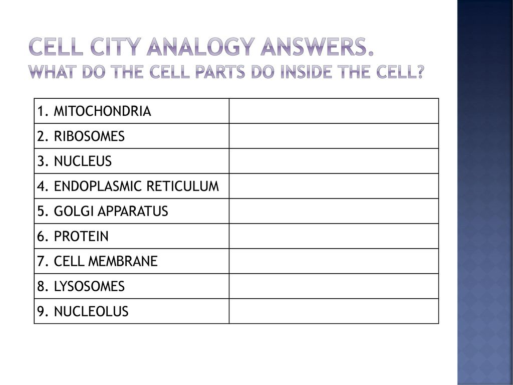 hight resolution of How many bacteria can fit in a cm? Can you see cells? - ppt download