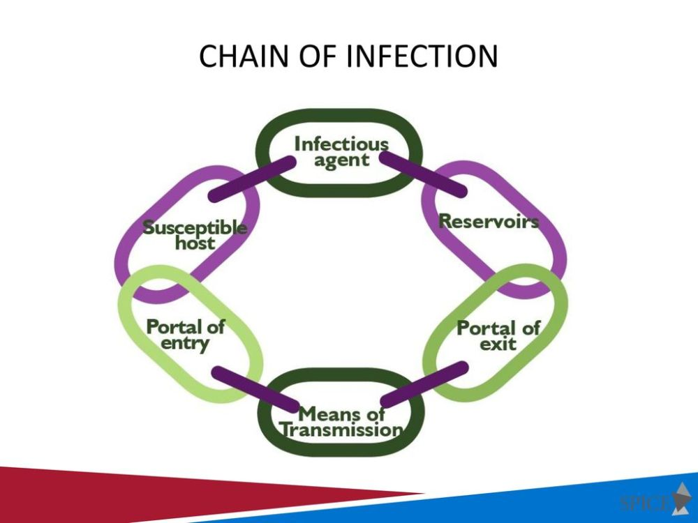 medium resolution of chain of infection