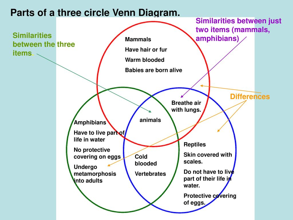 hight resolution of parts of a three circle venn diagram