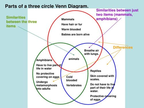 small resolution of parts of a three circle venn diagram