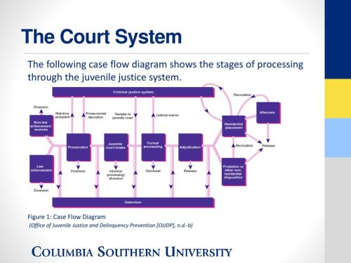 small resolution of the court system the following case flow diagram shows the stages of processing through the juvenile