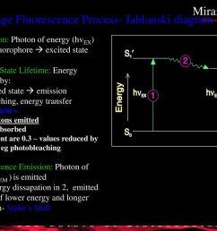 the 3 stage fluorescence process jablonski diagram [ 1024 x 768 Pixel ]