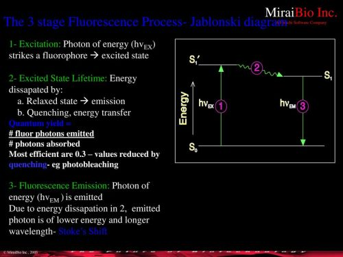 small resolution of the 3 stage fluorescence process jablonski diagram