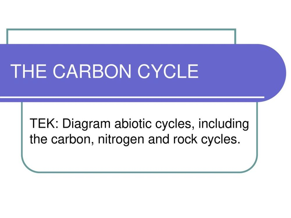 medium resolution of 1 the carbon cycle tek diagram abiotic cycles including the carbon nitrogen and rock cycles