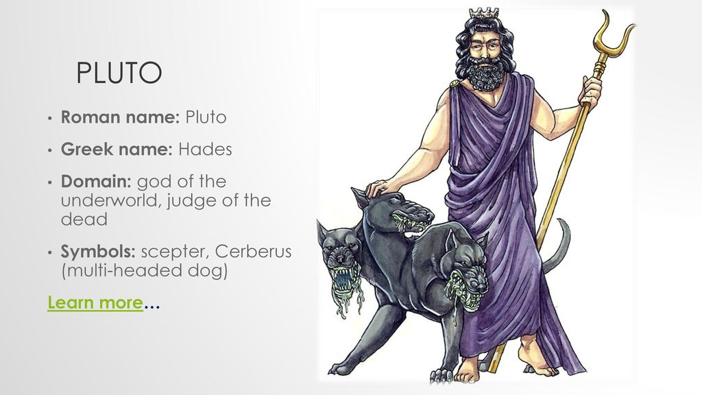 Dog 3 Name Hades Headed