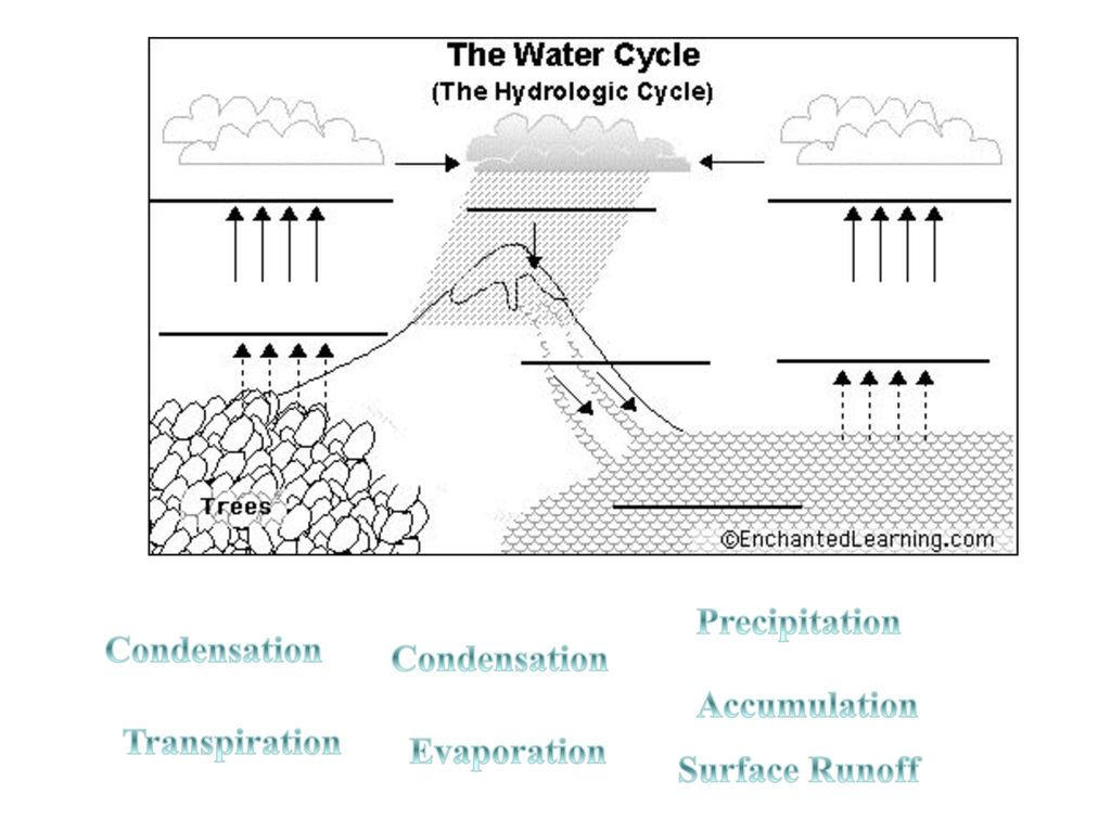 hight resolution of 5 precipitation condensation condensation accumulation transpiration evaporation surface runoff