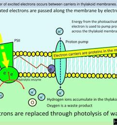 12 electron  [ 1024 x 768 Pixel ]