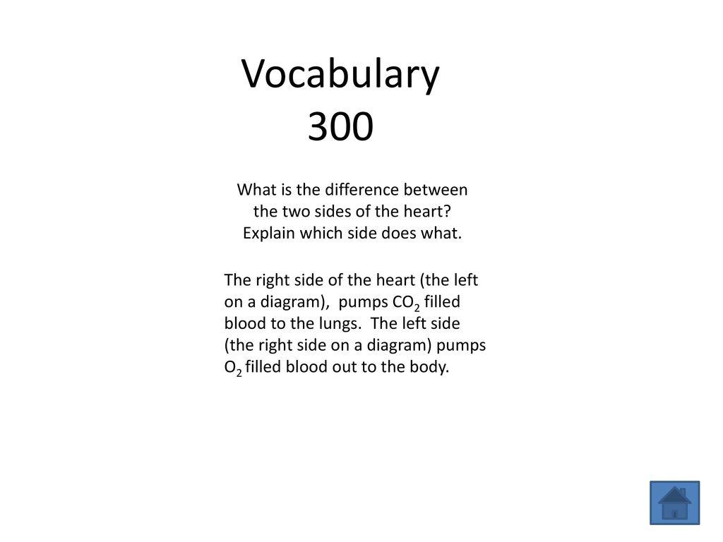 hight resolution of 4 vocabulary